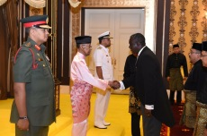 Presenting credentials to the current Agong of Malaysia H.E. Abdul Halim of Kedah